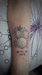 tetování kaktus barevné watercolor newschool