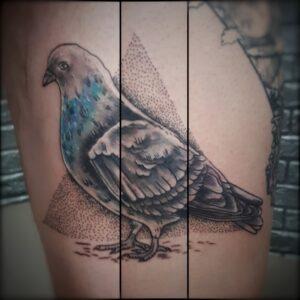 tetování holub newschool dotwork