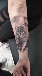 tetování plzeň vlk newschool